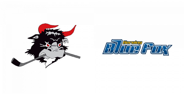 Rødovre Mighty Bulls - Herning Blue Fox